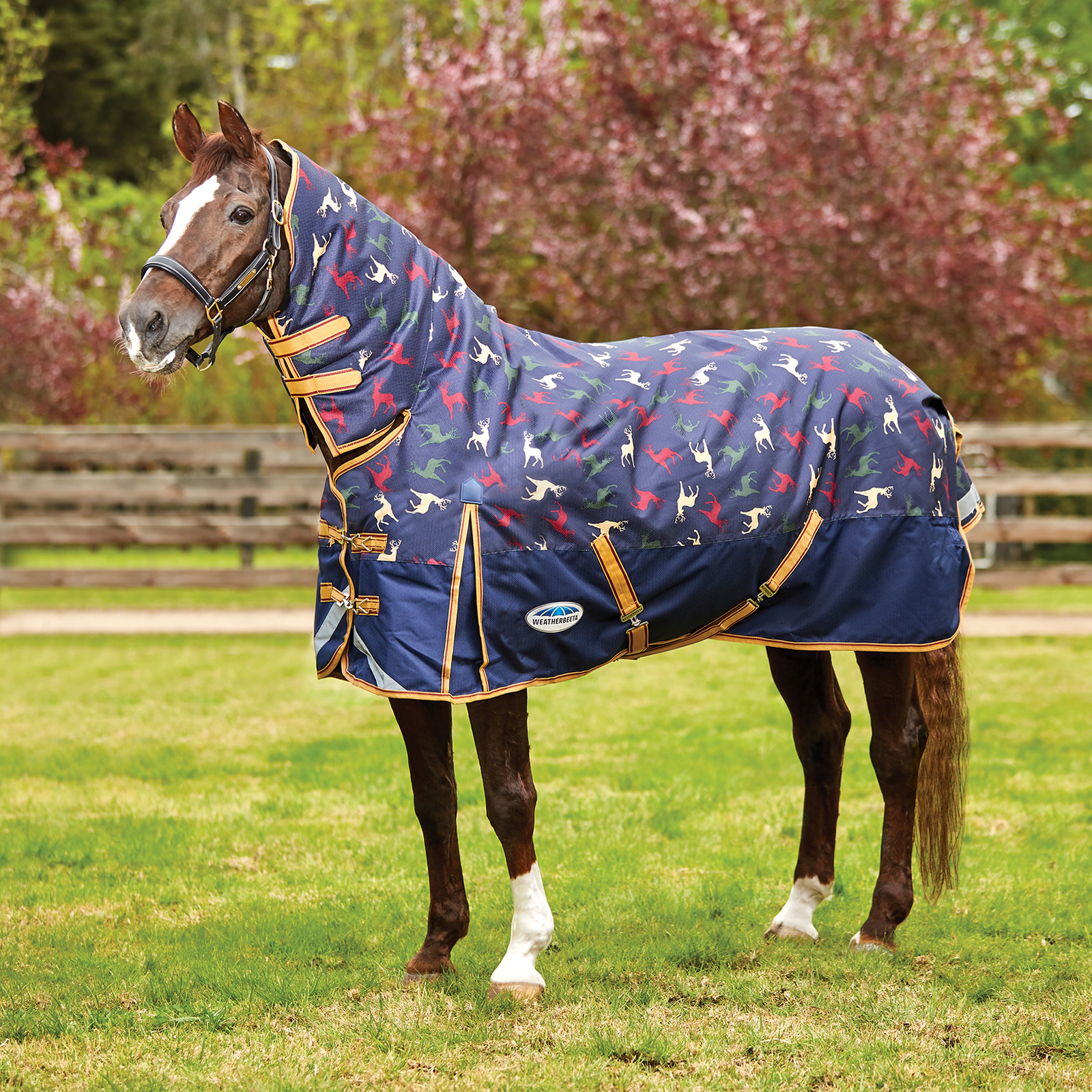 Heavyweight Turnout Rugs