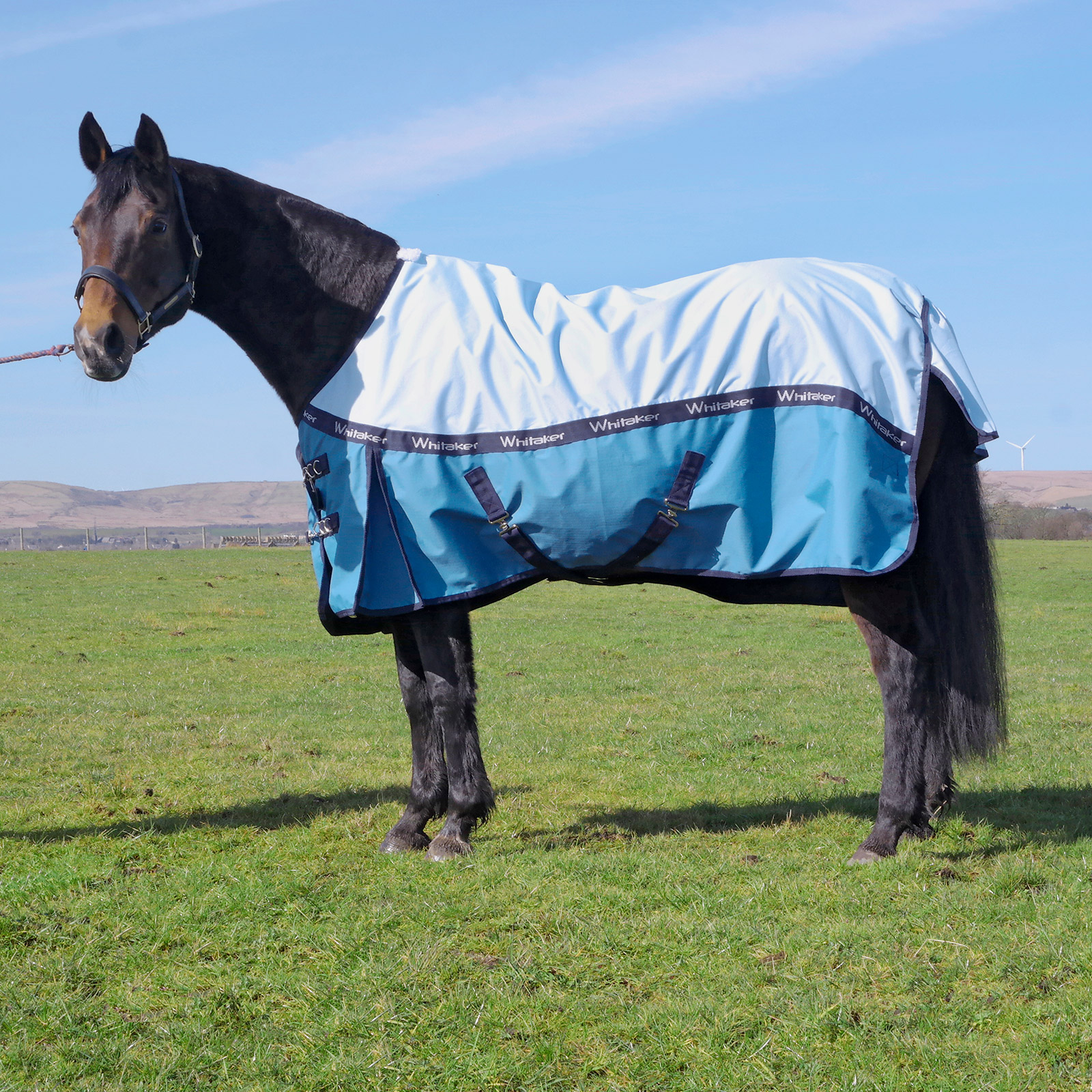 John Whitaker Lightweight Turnout Rugs