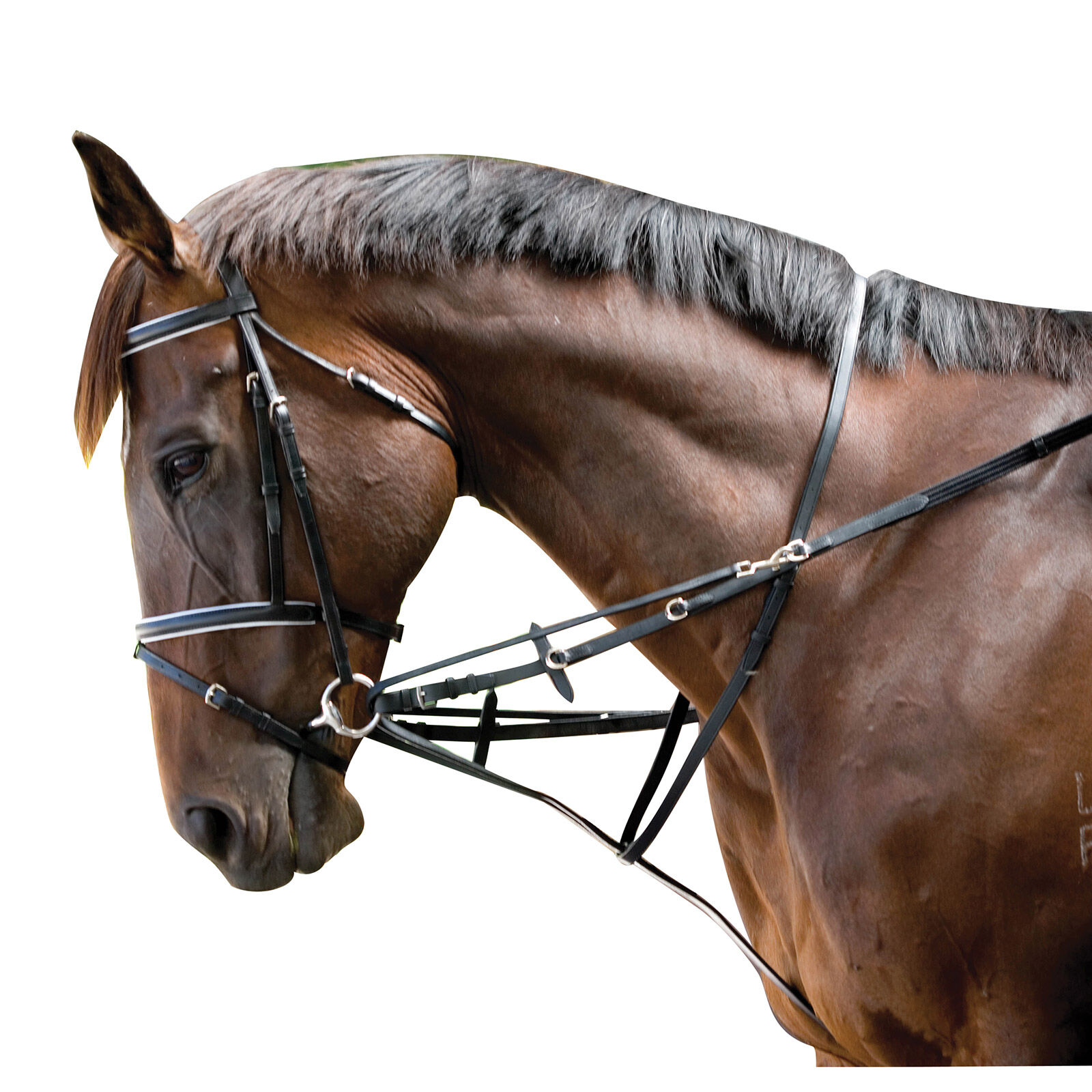 Kincade Leather Grackle Noseband