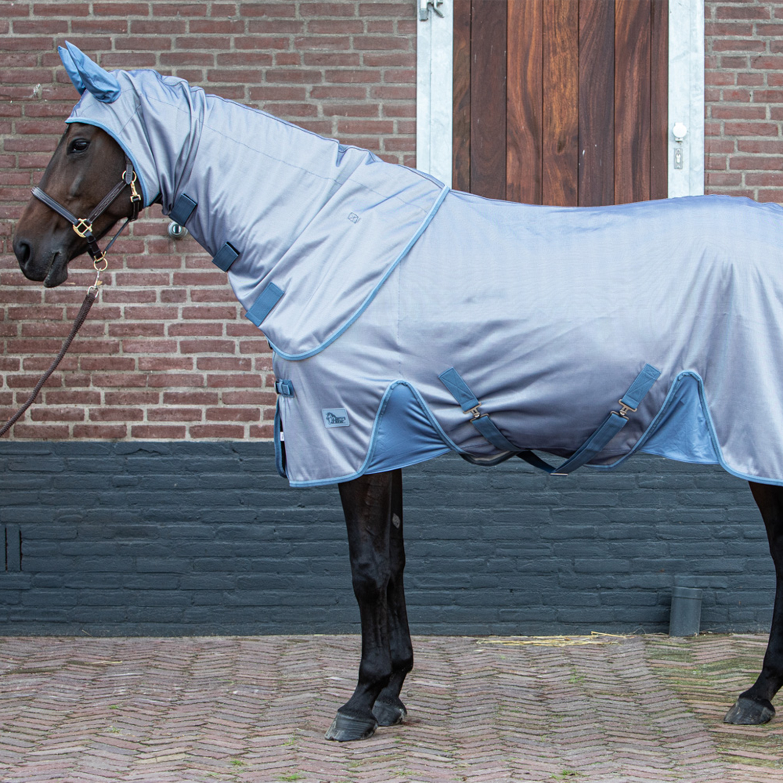 Harry S Horse Fly Rug Mesh Reflective