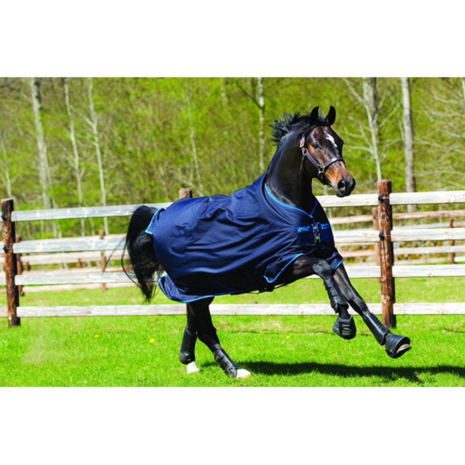 Horseware Amigo Bravo 12 Turnout Rug