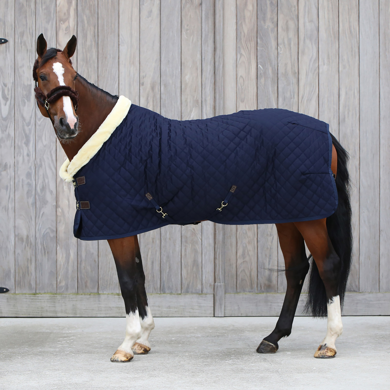 Kentucky Horsewaer Show Rug, 160g | Horze