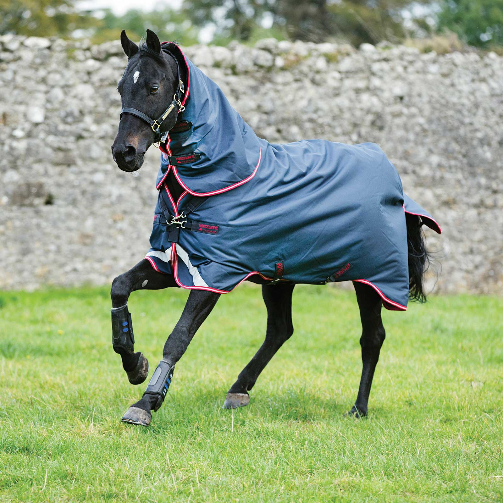 Horseware Amigo Bravo 12 Plus Turnout