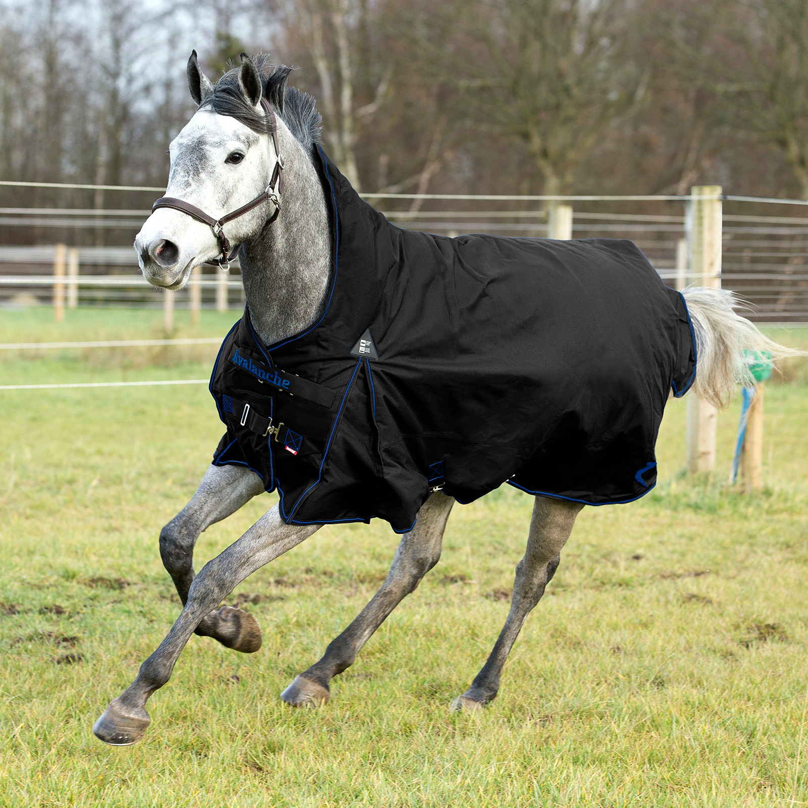 Heavyweight Winter Turnout Rug