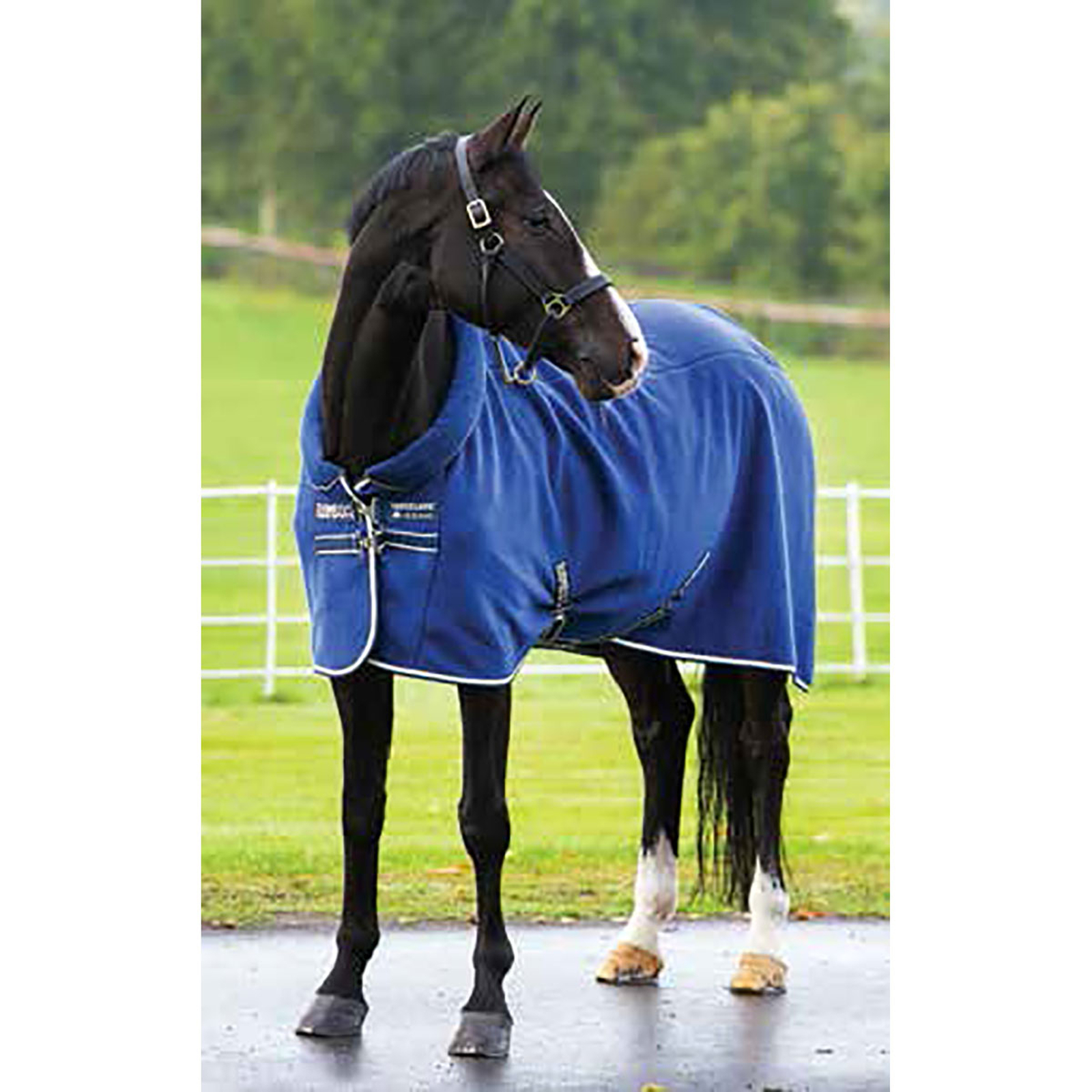 Horseware Coolers Fleeces Sheets Horze