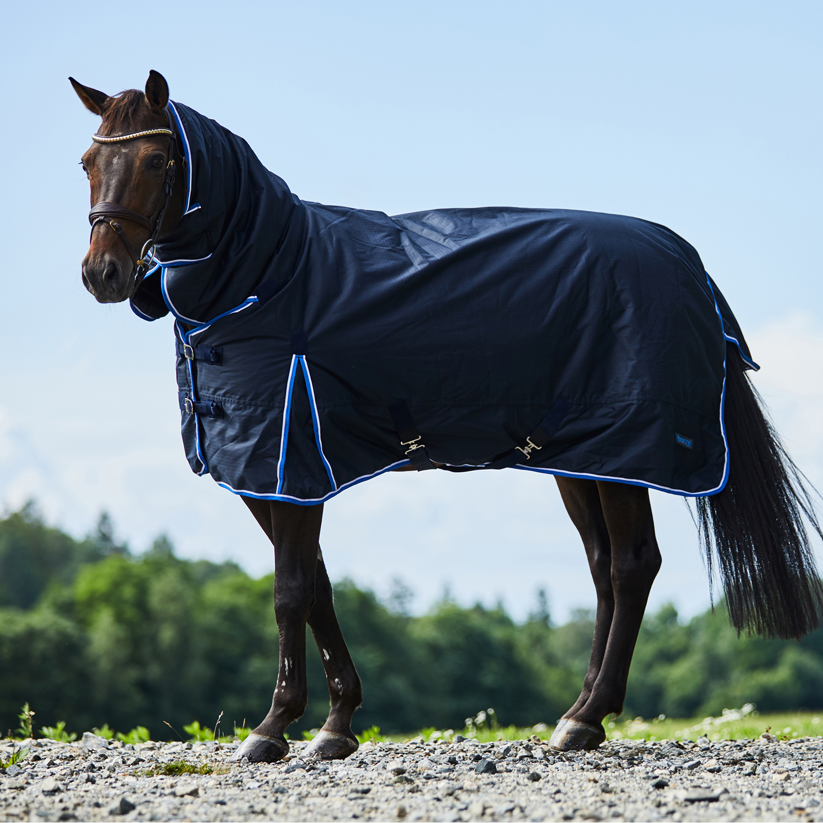 Buy Horse Equipment Online Horse Equipment Riding Equipment Accessories Horze