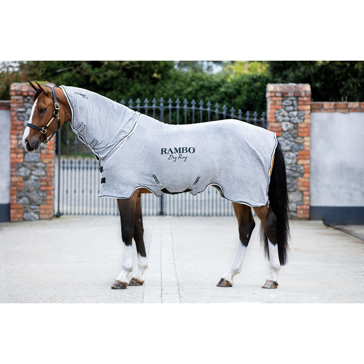 L Pro West Brand Tattini Riding