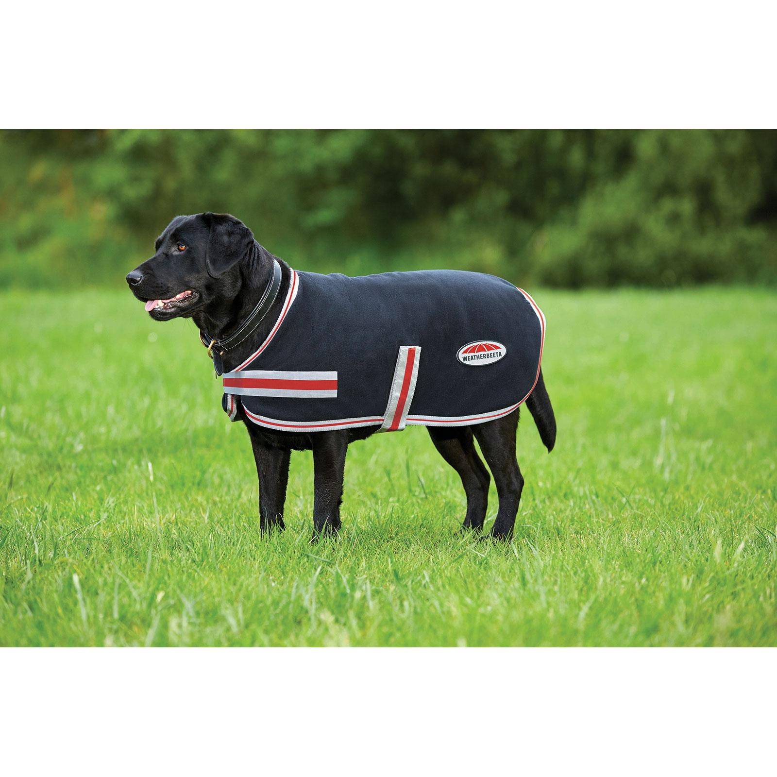 Weatherbeeta Dog Rugs Horze