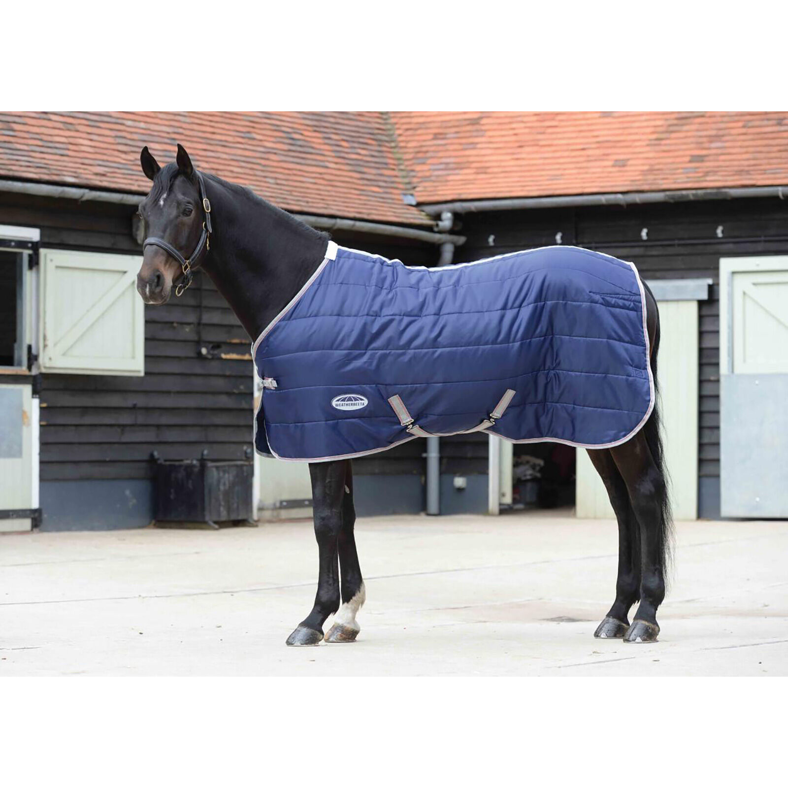 NETPROSHOP Horse Stable Rug Hanger with 3 Swivelling Arms Black