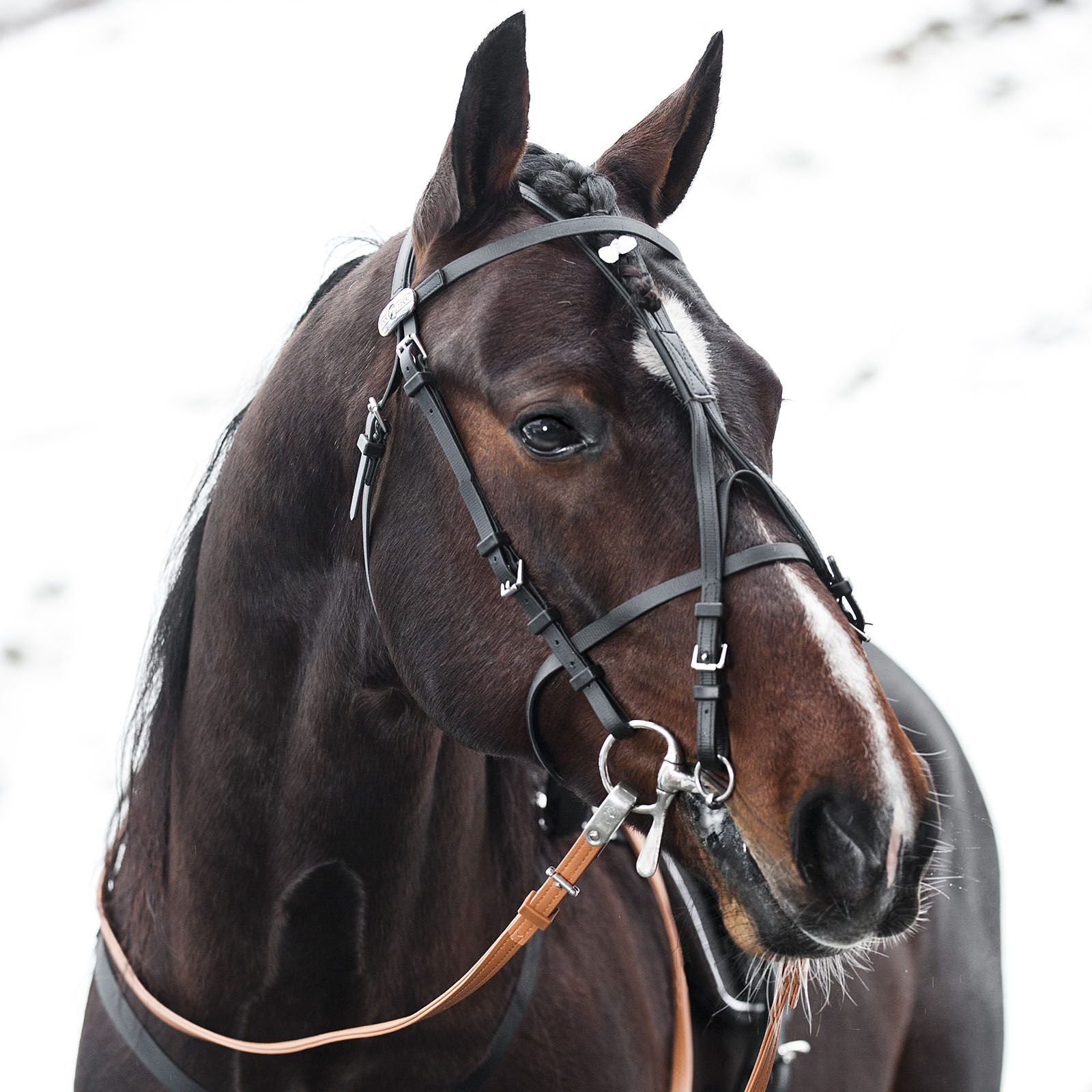 100/% Beta Finn-Tack Complete Synthetic American Bridle for Harness Racing