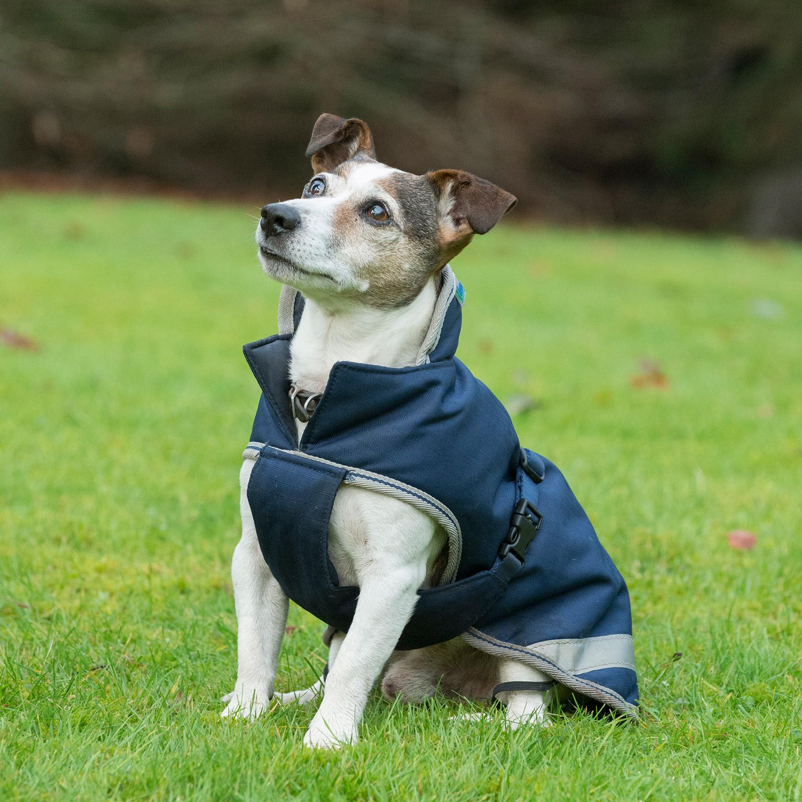Bucas Freedom Dog Blanket 300g 30 45