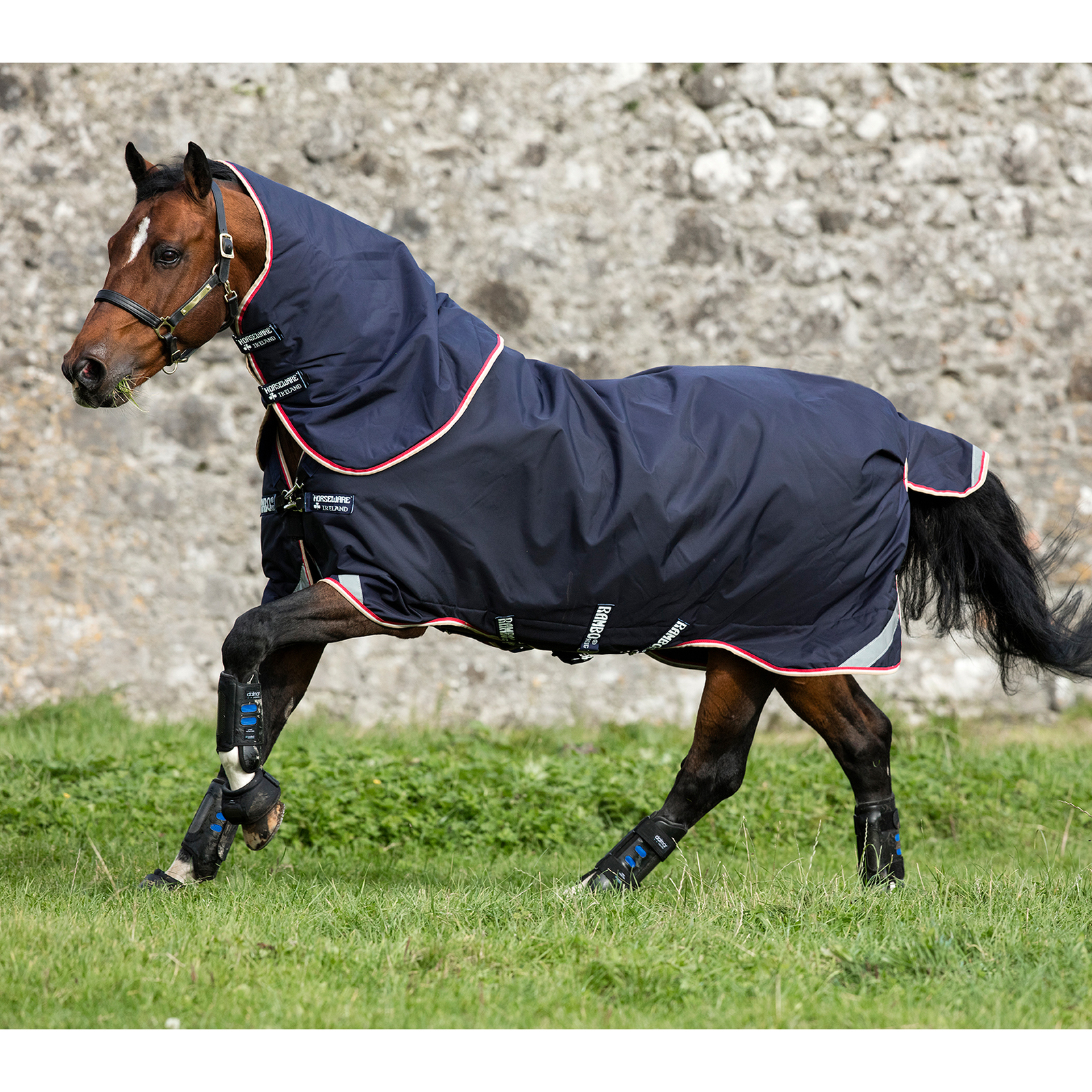 Horseware Medium Heavyweight Turnout